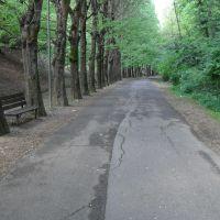 Vallone, Пистойя