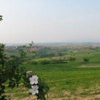 panorama: torrita e valdichiana, Сьена