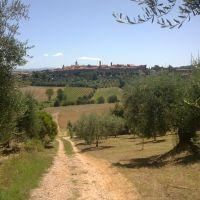 Panorama di Torrita di Siena, Сьена