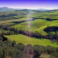 Montepulciano hills, Сьена