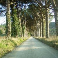 """Strada della """"Montagnola"""", Перуджиа"""