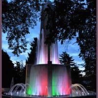 Fountain, Триест