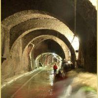 Bologna underground (Aposa), Болонья