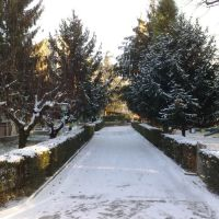 Vialetto dinverno, Модена