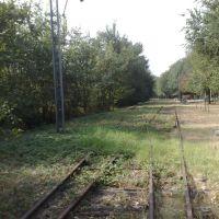Ferrovia dismessa.. Ciclabile futura?, Модена