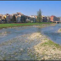 Parma, il Torrente : unOasi di Natura in Centro Città, Парма