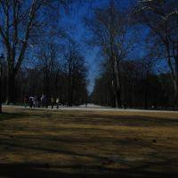 Parma Parco Ducale, Парма