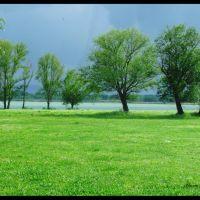 che  verde dopo il temporale!, Пиаченца