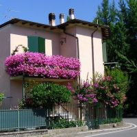 Balcone in fiore, Пиаченца