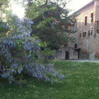 I Glicini di Rocca Rangoni, Пиаченца