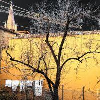 Spilamberto, Via Monache, Фенца