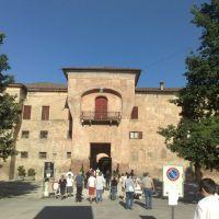 Rocca Rangoni, ingresso, Фенца