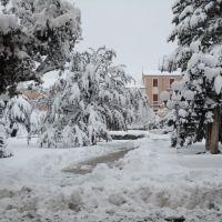 Nevicata del 22-01-2011, Кампобассо