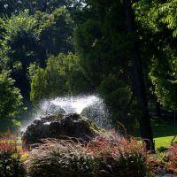Piacenza in poche mosse: il parco, Пьяченца