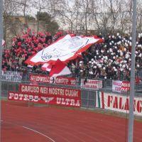 Stadio, Forza Rimini, Римини
