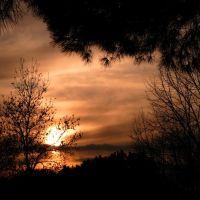Misteriosa intimità ... al calar della sera, Римини