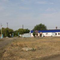 Магазин в КСХТ, Мартук