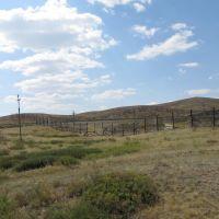 Казахстанская степь, Челкар