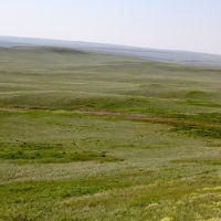Мугоджары, Шубаркудук