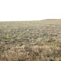 Глинистая пустыня, Шубаркудук