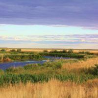 Река Уил в Темирском районе., Шубаркудук