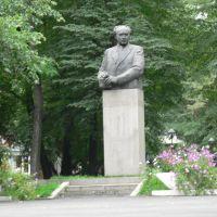 Mukhtar Auezov, Алма-Ата