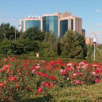 Hotel Ankara, Алма-Ата
