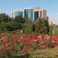 Hotel Ankara, Алматы