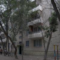 3 м-н, д. 36, западная сторона, Капчагай