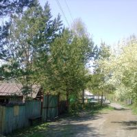 ул.Луговая , май 2009., Белоусовка