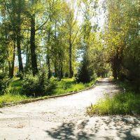 Осенним светом 2006 залит парк, Зыряновск