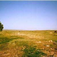 Черниговка, Катон-Карагай