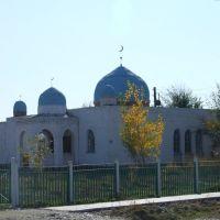курчумская мечеть - М.Ахмади, Курчум