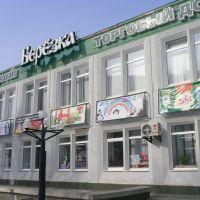 возле 24 школы, Самарское