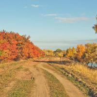 Золотая осень, Самарское