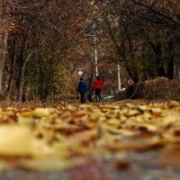 autumn Protozanova st. (NKO), Усть-Каменогорск