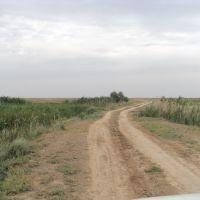 Дорога через дамбу на озеро Шалкар, Атырау