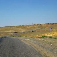Road Zhezkazgan - Ulytau near Zhezdi, Байчунас