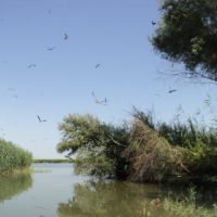 Выход на Урало-Каспийский канал (устье реки Урал), Балыкши