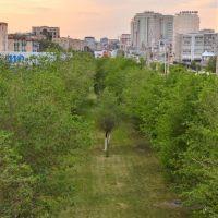 Morning Atyrau, Атырау(Гурьев)