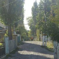 ул.школьная, Бурное
