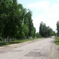 евгеньевский тракт, Бурное