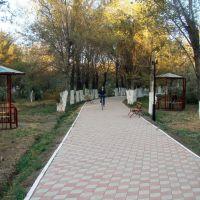 Новый облик парка, Ойтал
