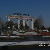 ДЕНДРОПАРК, Актас