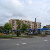 Салтанат, Актас