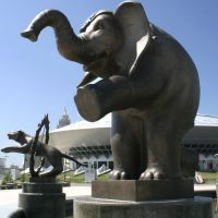 Слон, Атасу