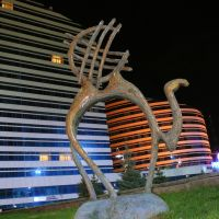 Astana, Camel at night, Атасу