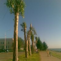 Набережная Северной Двины, Никольский