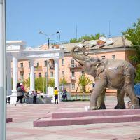 Слон, Абай