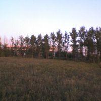 парк, Актау
